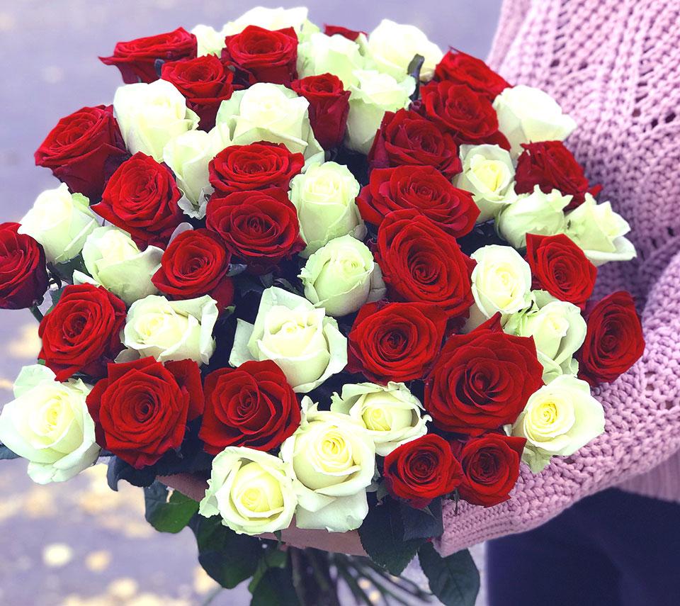 білі та червоні троянди | flower-power.rv.ua