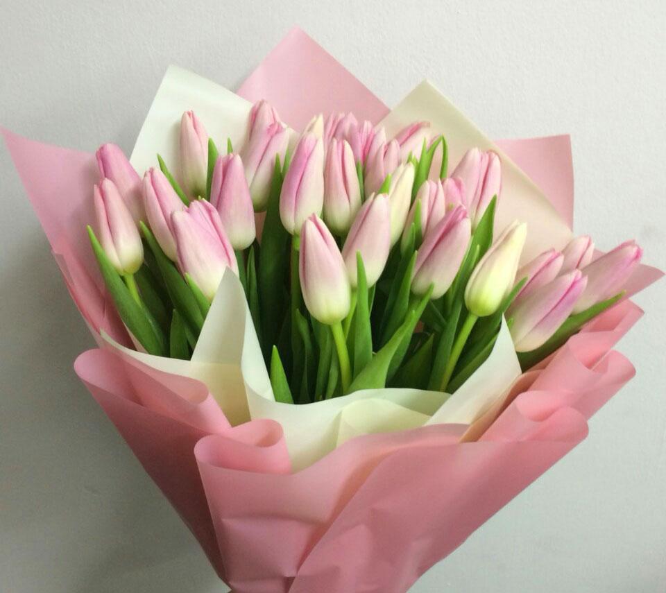 ніжні тюльпани | flower-power.rv.ua