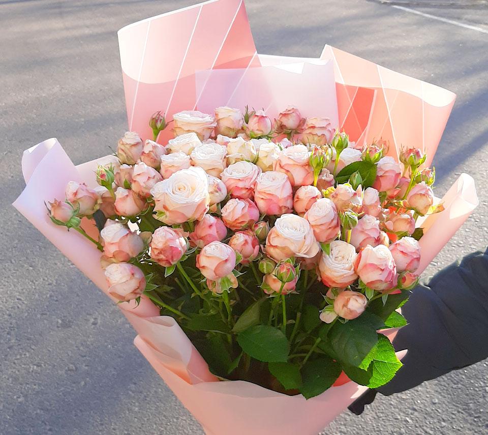 троянда бомбастік | flower-power.rv.ua